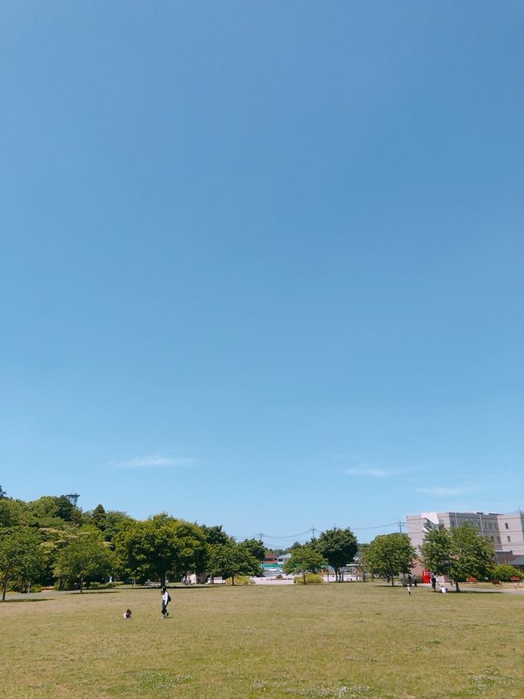 image4 (10)
